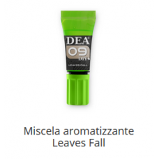 9 Miscela aromatizzante Leaves Fall 10 ml